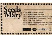 Seeds Mary tournée
