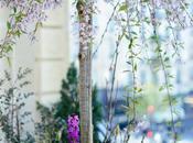jardin ville