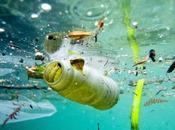 l'assaut grands vortex déchets dans océans