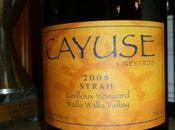 Etats-Unis Cayuse Syrah Cailloux Vineyard 2008 Afrique Klein Constancia Constance 2005