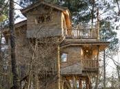 Loisirs cabane dans arbres