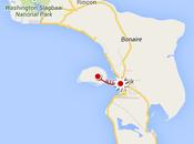 Plongez avec dans sanctuaire marin l'île Bonaire…