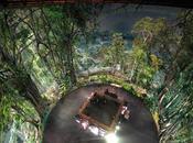 Amazonia Panorama Rouen