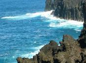 Carnet voyage l'île Réunion -partie
