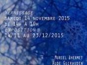 Exposition Pour finir l'année 2015 Galerie Aude Guirauden Toulouse