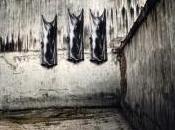 Exposition dans prisons Lyon Ernest PIGNON-ERNEST Bruno PACCARD Galerie A-M& Pallade