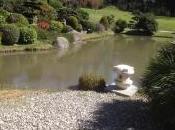 Apprendre japonais Chronique d'une novice