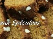 Cake Spéculoos Thermomix