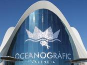 [SSAFT Film Production Proudly Presents] Oceanogràfic