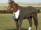 Découvrez premier costume pièces pour cheval course