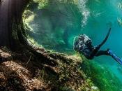 Chaque printemps, parc Autriche disparaît sous l'eau…Ces photos complètement surréalistes vont vous faire rêver