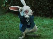 Storytelling réseaux sociaux visuels stratégie lapin blanc