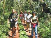 Iguaçu Trilha Poço Preto Rappelez-vous façon dont l...