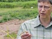 Stratégie Bill Gates,pour mettre fruits céréales naturelles Afrique.