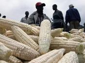 EUROPE Parlement européen contre colonialisme agricole Afrique