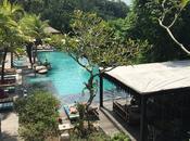 Jungle Fish, oasis verdure Bali