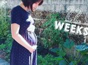 Journal grossesse mois