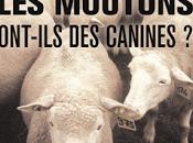 moutons ont-ils canines Serge Dussex Sandra Heyn
