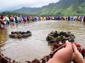 Hawai Peuples premiers leaders planète réunissent pour l'avenir