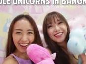 café pour fans Licornes Bangkok