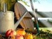 [Podcast] 'Les Conseils Jardin Françoise' Préparez votre jardin pour l'hiver