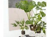 #Deco craque pour… vases (presque) autonomes d'Aric Snee