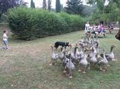 Notre journée Parc Bournat