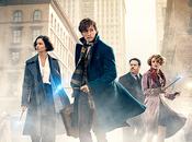 MOVIE Fantastic Beasts nouveau trailer bourré d'action pour spin-off Harry Potter