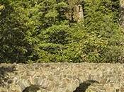Parc national Mont-Saint-Bruno