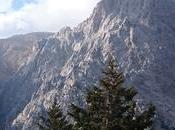 Randonnée dans Gorges Samaria