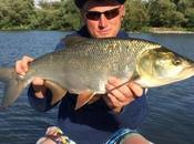 Pêche l'aspe Moselle