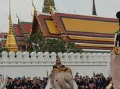 Bangkok éléphants blancs d'Ayutthaya marchent Grand Palais (vidéo)
