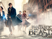 MOVIE Fantastic Beasts Where Find Them Notre critique