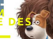 #Concours- copies film d'animation Comme Bêtes!