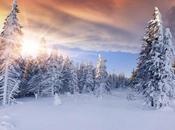 meilleurs conseils pour prendre photos hiver