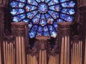 L'orgue, instruments