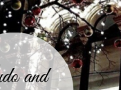 Ludo fêtent Noël