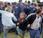 violence anti-#migrants journaliste hongroise d'extrême droite condamnée