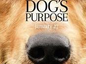 BOYCOTT film vies chien