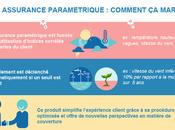 généralise l'assurance paramétrique