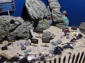 L'aquarium Sables d'Olonne
