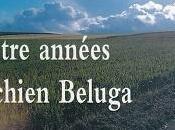 Quatre années chien Beluga autres nouvelles, Julien Sansonnens
