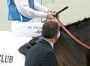 Jockey Club supplémentation