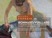 Bonnard/Vuillard collection Zeïneb Jean-Pierre Marice-Rivière
