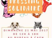 Vide dressing solidaire faveur Cabourg