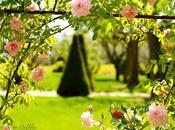 Dans jardins Joanis