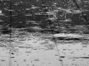 pluie faites visite musée