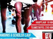 Steinacher Sommer-Abend-Lauf: COURSE RECORD