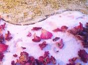 Glace kulfi pistache glace rose