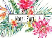 North swell